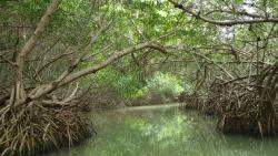 Celestan Biosphere Reserve