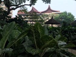 Little honeymoon at shangri-la