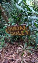 Durian Chalet