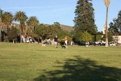 Cemetery Memorial Park