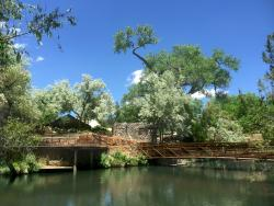 Sunrise Springs Integrative Wellness Resort
