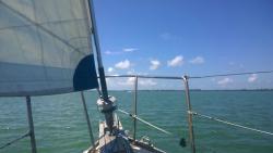 New Moon Sailing