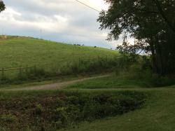 A private drive adjacent to the property - we watched a meteor shower from here