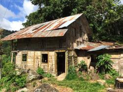 House of the Dreamer - Casa Del Sonador