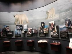 National Wildlife Visitor Center