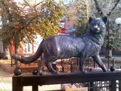 Иркутская кошка