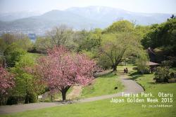 Temiya Park