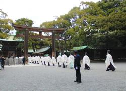 Odyssey Tours, Tokyo One-day Tour