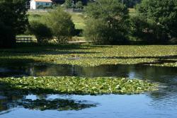 Lagoa de Sobrado