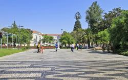 Avenida Luísa Todi