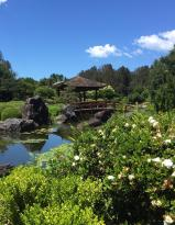 Gosford Japanese Gardens Point Cafe