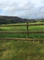 Erwbarfe Farm Caravan Park