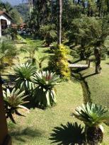 Pousada Jardins do Passaredo