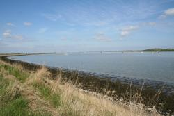 Oare Marshes Nature Reserve