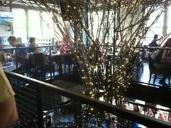 Bar Siena