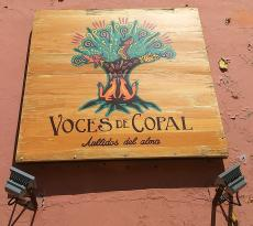 Voces de Copal