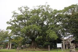 Aohata Shrine