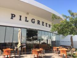 Pilgreen