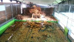 Acuario do Grove