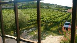 Corteforte Winery