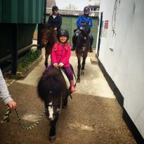 Kingston Riding Centre
