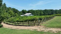 Rocky River Vineyards