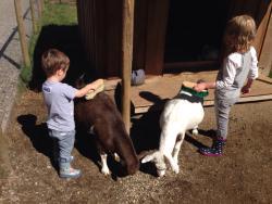 Hamilton Hobby Farm