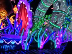 Fireworks at Disneyland Park
