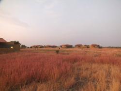 Wild grass-land view around the resort