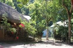Mariposario Zhaveta Yard