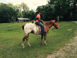 Adventure Horse Riding in NYS