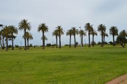 Catani Gardens