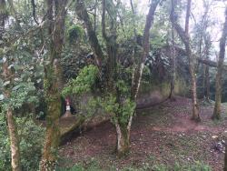 Sao Sebastiao chapel and cave