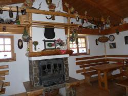 Penzion Borovec