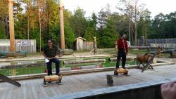 Jack Pine Lumberjack Show