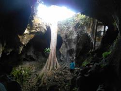 Elephant Cave Yogyakarta