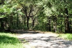 Parco Farneto