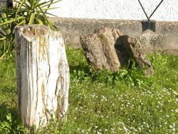 Museo Archeologico e Paleobotanico di Perfugas
