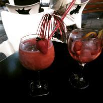Gins & Tonics