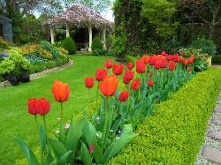 Rockvale Gardens