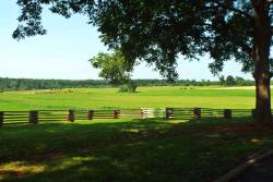 Nash Farm Battlefield