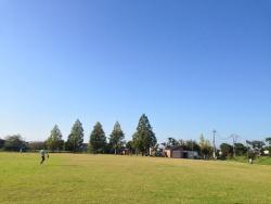 Cosmos Park Kitano
