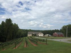 Sweet Home Carolina Vineyard & Winery