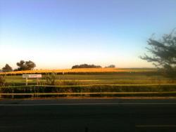 Hiller Field