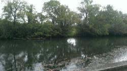 Holston River Park