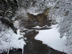 Mill Creek Ravine Park