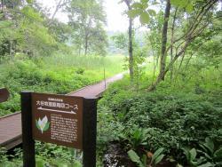 Iizuna Highlands Oyachi Marsh