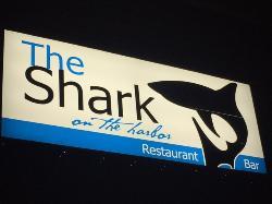 shark on the harbor