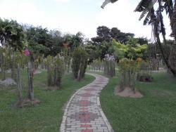 Sekayu Agriculture Park  - Taman Pertanian Negeri