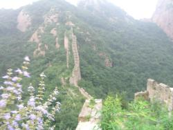 Great Wall at Dongjiakou